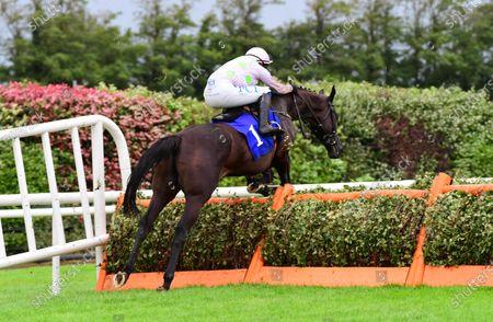 Killarney JON SNOW & Paul Townend jump the last to win the Irish Stallion Farms EBF Novice Hurdle.