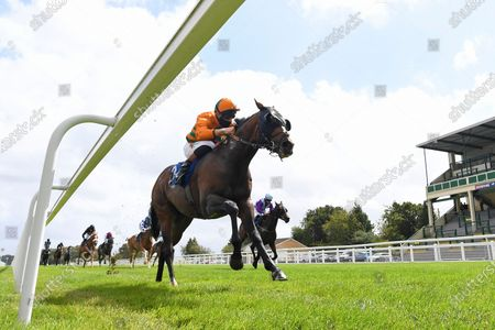 Winner of The Dinton Handicap (Div 1) Old News (Orange) ridden by Finlay Marsh and trained by Richard Hughes  during Horse Racing at Salisbury Racecourse on 21st August 2020