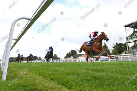 Editorial picture of Behind Closed Doors Race Meeting, Horse Racing, Salisbury Racecourse, Wiltshire, United Kingdom - 21 Aug 2020