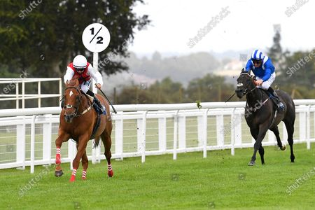 Stock Image of Winner of The Pitton Handicap Stakes Just Glamorous ridden by Nicola Currie and trained by Christopher Mason during Horse Racing at Salisbury Racecourse on 21st August 2020