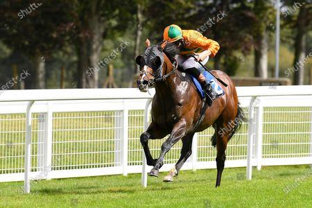 Editorial picture of Behind Closed Doors Race Meeting, Horse Racing, Salisbury Racecourse, Wiltshire, United Kingdom - 21 Aug 2020