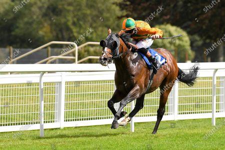 Editorial image of Behind Closed Doors Race Meeting, Horse Racing, Salisbury Racecourse, Wiltshire, United Kingdom - 21 Aug 2020