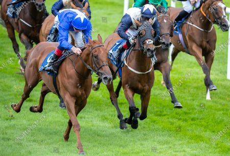 Stock Picture of Kevin Manning on Bounce the Blues holds off Gary Carroll on Auxilia to win The Owenstown Stud Stakes