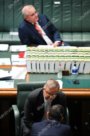 Stock Photo of Australian Opposition Leader Anthony Albanese (C) speaks to Shadow Treasurer Jim Chalmers (bottom) during the House of Representatives Question Time at Parliament House in Canberra, Australia, 26 August 2020.
