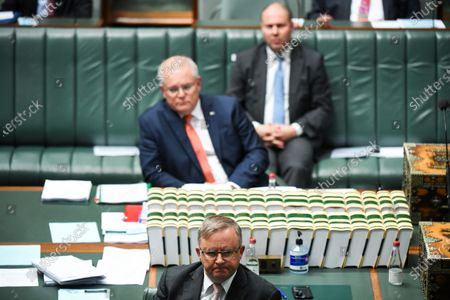 Stock Picture of Australian Opposition Leader Anthony Albanese (bottom) reacts during the House of Representatives Question Time at Parliament House in Canberra, Australia, 26 August 2020.
