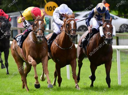 Editorial photo of Horse Racing - 26 Aug 2020
