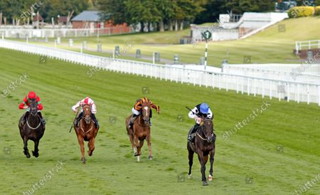 BADENSCOTH (George Downing) wins The Ladbrokes Best Odds Guaranteed Handicap Goodwood