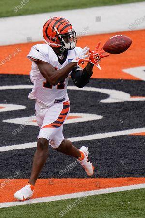 Stock Photo of Cincinnati Bengals wide receiver John Ross III (11) catches a pass during warm-ups before an NFL football team scrimmage in Cincinnati