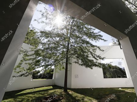 Stock Photo of The sun shines into the garden gallery artwork by Japanese architect Sou Fujimoto on a sunny day at the sculpture museum set in nature in Cologne, Germany