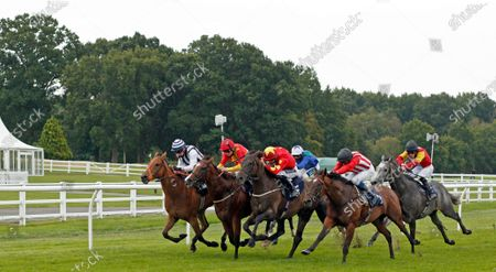 REDEMPTIVE (right, William Buick) dead-heats with MR MILLARCKY (left, Shane Kelly) from HE'S OUR STAR (2nd right) and NEWTON JACK (2nd left) in The Read Andrew Balding On Betway Insider Handicap Lingfield