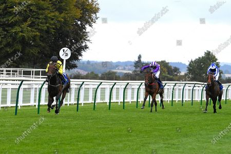 Winner of The Shadwell Apprentice Handicap (Div 2)   Wightman ridden by George Bass and trained by Mick Channon during Horse Racing at Salisbury Racecourse on 3rd September 2020
