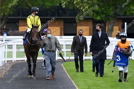 Winner of The Shadwell Apprentice Handicap (Div 2)   Wightman ridden by George Bass and trained by Mick Channon is led into the Winners enclosure during Horse Racing at Salisbury Racecourse on 3rd September 2020