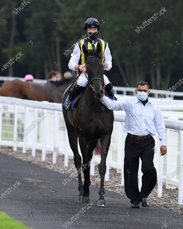 Winner of The British Stallion Studs EBF Quidhampton Maiden Fillies' Stakes Lady Hayes ridden by Jack Mitchell and trained by Roger Varian  is led into the Winners enclosure during Horse Racing at Salisbury Racecourse on 3rd September 2020