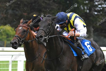 Winner of The British Stallion Studs EBF Quidhampton Maiden Fillies' Stakes Lady Hayes  (nearside) ridden by Jack Mitchell and trained by Roger Varian  during Horse Racing at Salisbury Racecourse on 3rd September 2020