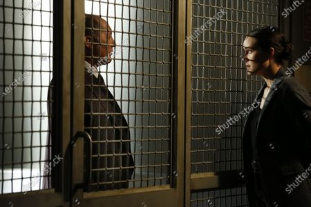 James Spader as Raymond 'Red' Reddington and Megan Boone as Elizabeth Keen