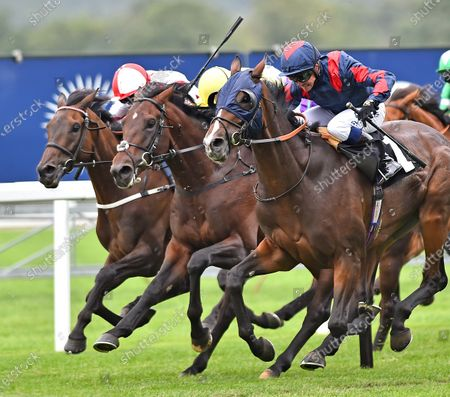 (R) Laafy (Jim Crowley) wins The Victoria Racing Club Handicap Stakes from (L) On To Victory (Martin Harley) and (C) Labeebb (Jack Mitchell). Photo © Hugh Routledge.