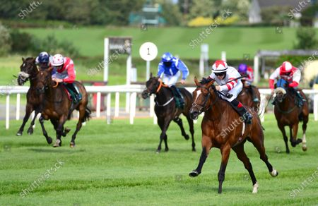 DOWN ROYAL 4-September-2020. BARON SAMEDI and Dylan Browne McMonagle win for owners LECH Racing Limited and trainer Joseph O'Brien.
