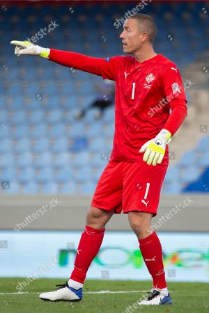 Iceland goalkeeper Hannes Por Halldorsson