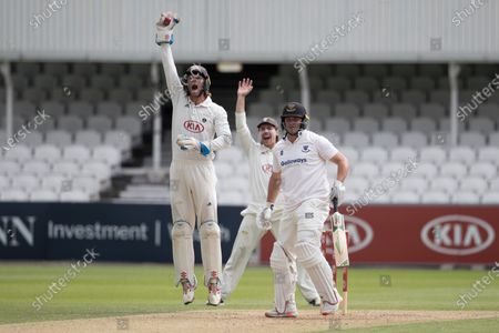 Ben Foakes, Surrey CCC leads an appeal for caught behind during Surrey CCC vs Sussex CCC, Bob Willis Trophy Cricket at the Kia Oval on 6th September 2020