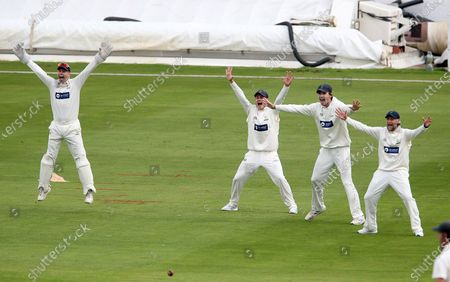 Tom Cullen, Owen Morgan, Nick Selman and Billy Root appeal for a wicket.