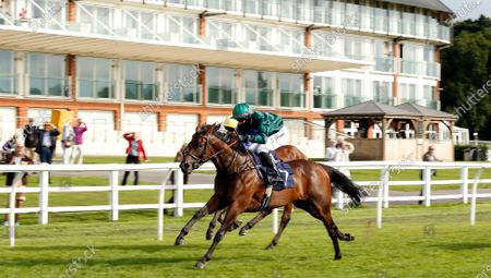 POETIC LILLY (Josephine Gordon) wins The Read Andrew Balding On Betway Insider Handicap Div2 Lingfield