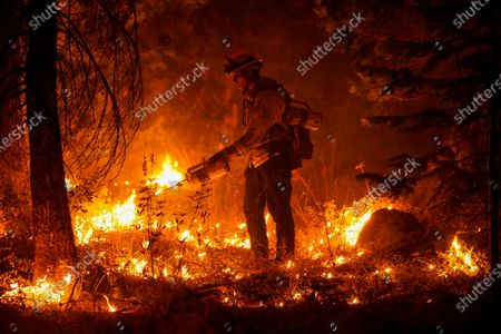 Editorial image of Creek Fire, Ca-168, Shaver Lake, California, United States - 06 Sep 2020