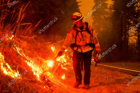 Stock Photo of Firefighter Ricardo Gomez, of a Cal Fire engine from Bradley, takes part in conducting a back burn operation along CA-168 during the Creek Fire as it approaches the Shaver Lake Marina on Sunday, Sept. 6, 2020 in Shaver Lake, CA. (Kent Nishimura / Los Angeles Times)