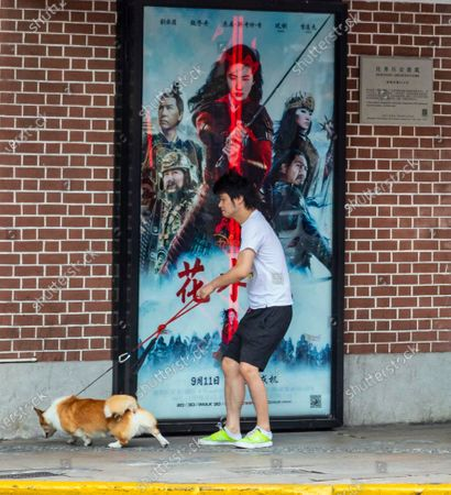 A man walks his dog in front of the movie theatre advertising Mulan movie in Shanghai, China, 09 September 2020. Disney's newest 200 million USD movie Mulan draws media attention after it was boycotted firstly in Hong Kong because of leading actress Liu Yifei support of China's policy for Hong Kong and crackdown of protestors. Later it was discovered that shooting of some parts of the movie took place in China's Xinjiang province which was accused by western media and governments for various human rights violations. The movie is set to have premiere in Chinese theatres on 11 September 2020 but pirated copies can be already found online, Chinese viewers of those copies already posted poor reviews on social media.
