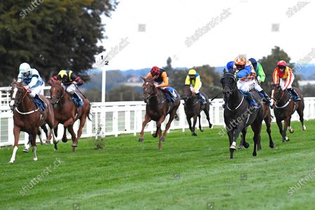 Stock Image of Winner of The Racing TV Handicap Stakes Mere Anarchy (Orange/white cap 2r) ridden by Kieran Shoemark and trained by Robert Stephens during Horse Racing at Salisbury Racecourse on 11th September 2020