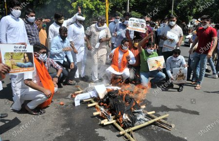 Members of BJP Yuva Morcha burn an effigy of Maharashta Prime Minister Uddhav Thackrey to burn in protest against Maharashtra government for their stand on actress Kangana Ranaut, at Sector 33 on September 10, 2020 in Chandigarh, India.