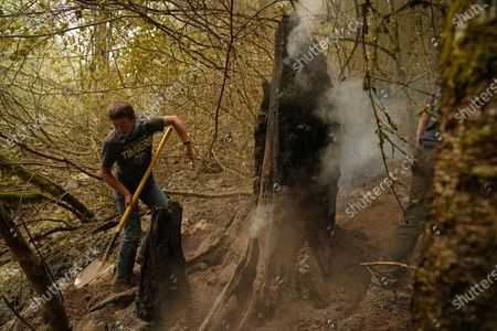 James May helps put out a smoldering stump at the Riverside Fire, near Molalla, Ore