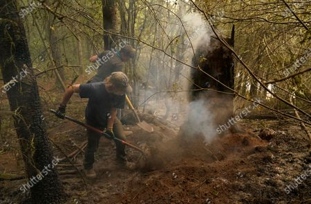 Wyatt Dunn, foreground, and James May help put out a smoldering stump at the Riverside Fire, near Molalla, Ore