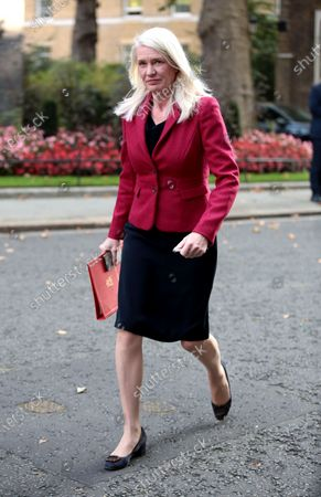 Amanda Milling, Minister without Portfolio