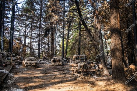 Stock Photo of A general view burned out vehicles on Alba Road after the CZU Lightning Complex fire tore through parts of Felton in Santa Cruz County, California, U.S., on Thursday, Aug. 20, 2020. Since the beginning of the year, wildfires have burned over 3.2 million acres in California. Since August 15, when California's fire activity elevated, there have been 25 fatalities and over 4,200 structures destroyed.