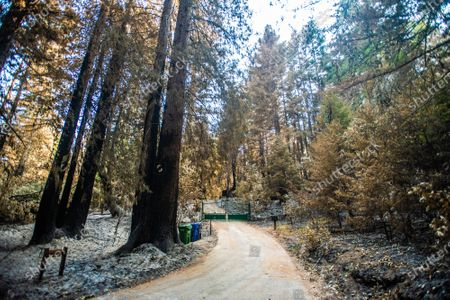 A general view of property damage on Alba Road after the CZU Lightning Complex fire tore through parts of Felton in Santa Cruz County, California, U.S., on Thursday, Aug. 20, 2020. Since the beginning of the year, wildfires have burned over 3.2 million acres in California. Since August 15, when California's fire activity elevated, there have been 25 fatalities and over 4,200 structures destroyed.