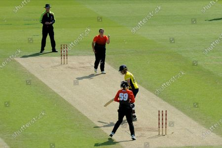 Charlotte Taylor of Southern Vipers celebrates the wicket of Alice Davidson-Richards