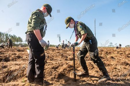 Scouts are seen planting trees at the Lipusz Forest District. The #sadziMY campaign was held for the second time in all forest districts. In the previous year, foresters distributed seedlings to volunteers. The initiator of the nationwide campaign was President Andrzej Duda, who together with his wife Agata Kornhauser-Duda planted young trees in the Lipusz Forest District in Gdansk, an area damaged by a hurricane in 2017.