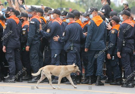 A dog walks past policemen standing alert around the Sanam Luang during the demonstration. Pro-democracy protesters converged at the historic royal heart of Bangkok to demand the resignation of the military-backed government and reforms of the monarchy, long considered a taboo subject in Thailand. The demonstrators gathered first at the Thammasat university campus on a college football field that was the scene of a massacre of left-wing students by pro-regime paramilitaries in 1976.