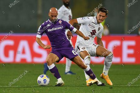 "Borja Valero(Fiorentina)Sasa Lukic (Torino)           during the Italian "" Serie A"" match between  Fiorentina 1-0 Torino  at  Artemio Franchi Stadium on September 19 , 2020 in Florence, Italy."