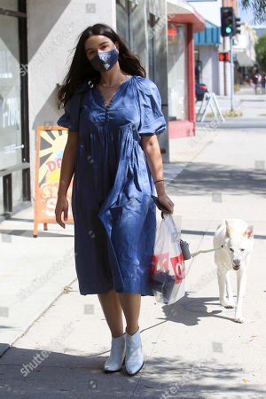 Crystal Reed is seen walking her dog down the street.