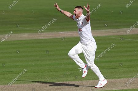 Stock Image of Jamie Porter of Essex appeals for the wicket of Steve Davies during Somerset CCC vs Essex CCC, Bob Willis Trophy Final Cricket at Lord's Cricket Ground on 24th September 2020