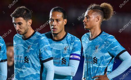 Stock Picture of Marko Grujic, Virgil van Dijk and Rhys Williams of Liverpool