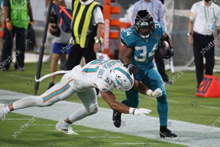 Jacksonville Jaguars running back Chris Thompson (34) is pushed out of bounds by Miami Dolphins outside linebacker Kamu Grugier-Hill (51) during the second half of an NFL football game, in Jacksonville, Fla