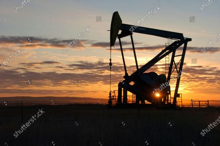A Whiting Petroleum Co. pump jack pulls crude oil from the Bakken region of the Northern Plains near Bainville, Mont. A federal judge has ruled that the Trump administration's leading steward of public lands has been serving unlawfully and blocked him from continuing in the position. U.S. District Judge Brian Morris said, that U.S. Bureau of Land Management acting director William Perry Pendley was never confirmed to the post by the U.S. Senate and served unlawfully for 424 days. Montana's Democratic governor had sued to remove Pendley, saying the the former oil industry attorney was illegally overseeing a government agency that manages almost a quarter-billion acres of land, primarily in the U.S. West