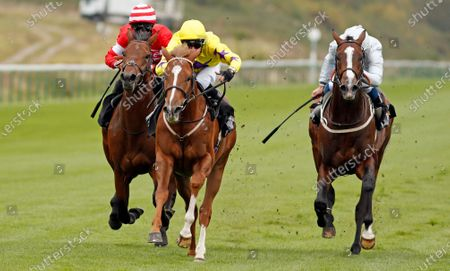 PERCY'S LAD (centre, Charles Bishop) beats GOLDEN FLAME (right) and FOUNTAIN CROSS (left) in The Call Star Sports Derby Wild Card Conditions Stakes Nottingham