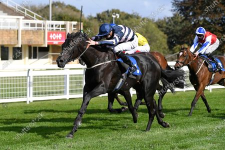 Stock Picture of Winner of The Byerley Stud British EBF Novice Stakes (Plus 10) (Div 2) Champagne Piaff (right) ridden by Hector Crouch and trained by Gary Moore during Horse Racing at Salisbury Racecourse on 1st October 2020