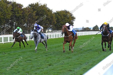 Editorial picture of Behind Closed Doors Race Meeting, Horse Racing, Salisbury Racecourse, Wiltshire, United Kingdom - 01 Oct 2020