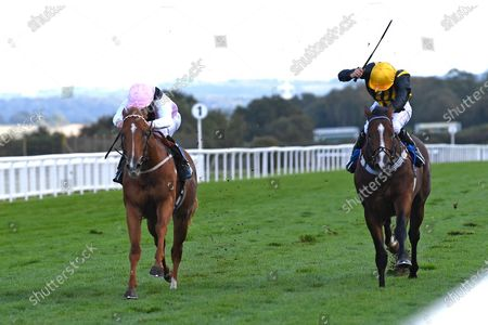Stock Picture of Winner of The Weatherbys TBA Conditions Stakes Apollo One  (pink) ridden by Martin Harley and trained by Peter Charalambousduring Horse Racing at Salisbury Racecourse on 1st October 2020