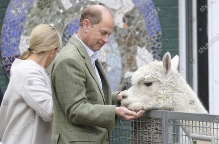 Stock Photo of Britain's Prince Edward and Sophie, Countess of Wessex visit Vauxhall City Farm in London, to see the farm's community engagement and education programmes as the farm marks the start of Black History Month
