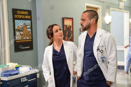 Camilla Luddington as Dr. Jo Karev and Jesse Williams as Dr. Jackson Avery